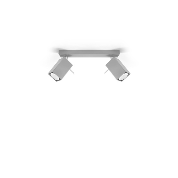 Regulowany plafon Merida 2 Szary Sufitowe | Plafony lampa do salonu